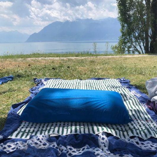 Hippychick Waterproof Memory Foam Travel Pillow